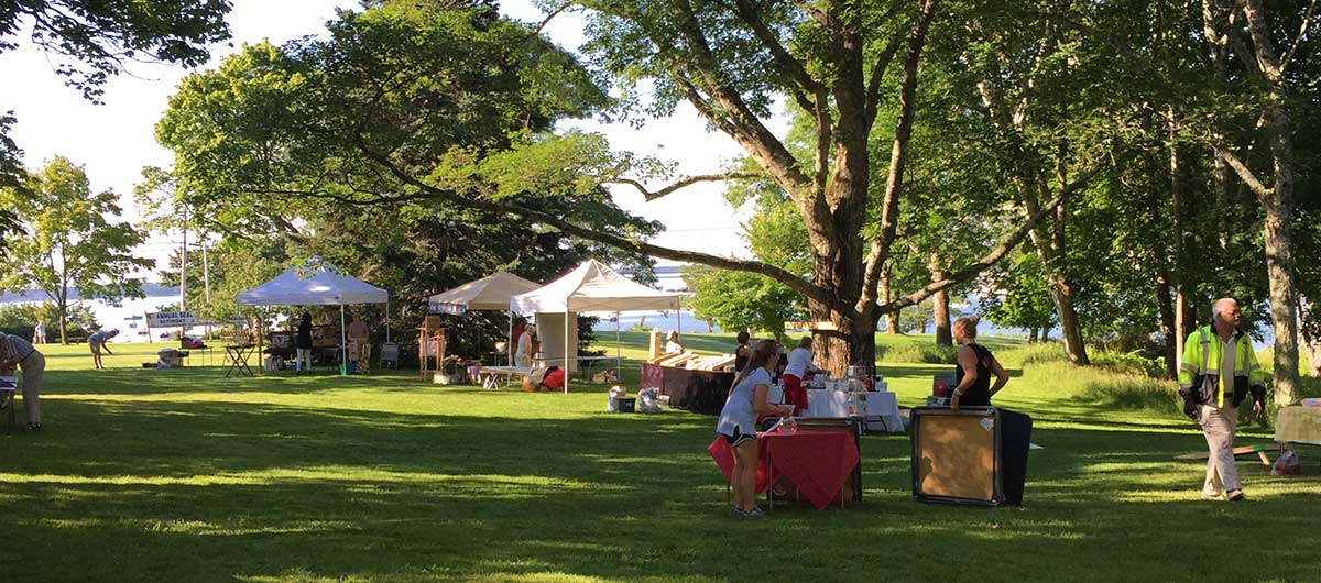 library fair on the village green